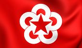 pic of communist symbol  - Flag of Council for Mutual Economic Assistance - JPG
