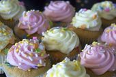 foto of sprinkling  - This is a photograph of Vanilla cupcakes topped with Pink and Yellow buttercream - JPG