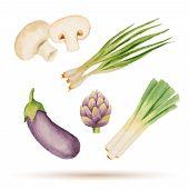 image of leek  - Set of watercolor vegetablesmushrooms eggplant artichoke leek onion - JPG