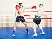 image of muay thai  - muai thai sportsman fighting at training boxing ring - JPG