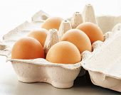 stock photo of pastures  - Organic eggs from pasture - JPG
