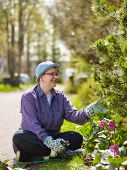 foto of weed  - Woman weeding in the garden and she use protective gloves - JPG