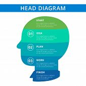 Постер, плакат: Head diagram template