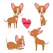 Постер, плакат: Cute Chihuahua Set