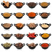 Lots of spices in small black dishes, with names beneath.  Large file.