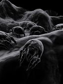 picture of dust mites  - 3d rendered close up of some dust mite - JPG