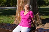 Tranquil Old Lady Relaxing Outdoors. Senior Grey Haired Woman In Casual Sitting On Park Bench With C poster