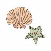 Starfish And Shell Green And Pink. Vector Object On White Background. Retro Style. In Isolation. Han poster
