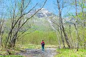Fefemale Hiker Standing In The Forest Of Kamikochi In Northern Japan Alps.male Hiker Standing In The poster