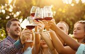 Happy Friends Having Fun Outdoors At The End Of A Beautiful Autumn Day In A Vineyard - Focus On Hand poster