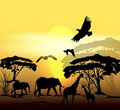 Beautiful Vector Savanna Scene With Sunrise, Trees And Animals Silhouettes