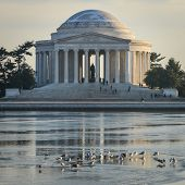 picture of thomas jefferson memorial  - Thomas Jefferson Memorial in Washington DC - JPG