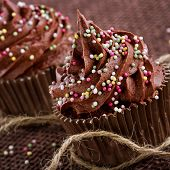 stock photo of sprinkling  - Chocolate cupcakes with colorful sprinkles on dark background - JPG