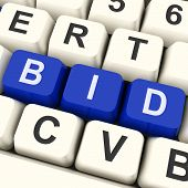 Bid Keys Show Online Bidding Or Auction