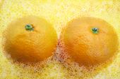 stock photo of nu  - Surreal Delicious Sexy Citrus Fruits  - JPG