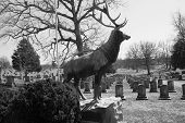 Elks National Home Cemetery, Bedford, Virginia