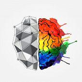 stock photo of right brain  - Creative concept of the human brain - JPG