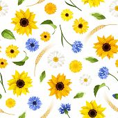 stock photo of gerbera daisy  - Vector seamless pattern with sunflowers - JPG