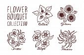 picture of arum  - Handsketched bouquets collection - JPG