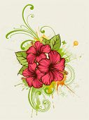 picture of hibiscus flower  - Summer floral background - JPG