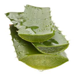 stock photo of body-lotion  - extract of aloe - JPG