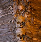 stock photo of head femur  - Lots of stacked human bones and skulls - JPG