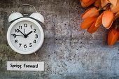 Spring Daylight Saving Time Concept, Spring Forward, With White Clock And Orange Tulips On Gray, Fla poster