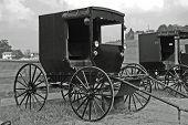 foto of olden days  - Image of an Amish horse drawn buggy - JPG