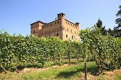 Old castle of Grinzane Cavour as seen through vineyards in Piedmont, northern Italy.