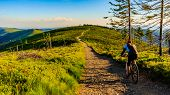Mountain biking cycling at sunset in summer mountains forest landscape. Woman cycling MTB flow trail poster