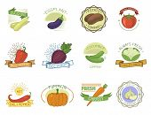 Vegetables Badge Vector Healthy Vegetably Tomato, Carrot, Potato Vegetarians Pumpkin Organic Food Mo poster