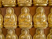 picture of budha  - Budhas on the wall that is so nice - JPG
