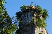 Old Church Tower In Green Bush. Spanish Dome Tower On Blue Sky. Historical Building In Gothic Style. poster