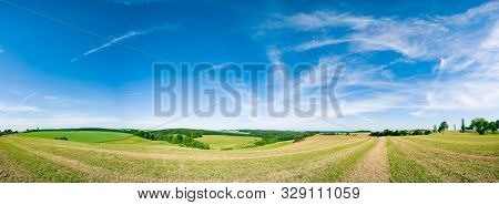 poster of Panorama of summer green field. European rural view. Beautiful landscape of wheat field and green gr