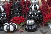 Scene Of Halloween Scenery With Pumpkins, Black Pumpkins Scenery For Halloween Celebration poster