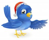 picture of bluebird  - Illustration of pointing bluebird wearing Christmas Santa Hat - JPG