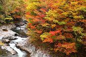 stock photo of fukushima  - Autumn colours of Nakatsugawa valley in Fukushima Japan - JPG