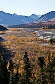 pic of denali national park  - View of the bridge over Denali National Park - JPG