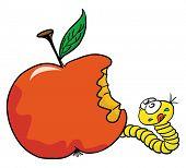 foto of maggot  - cartoon illustration of worm and apple - JPG