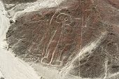 stock photo of geoglyph  - Nazca Lines Astronaut as viewed from a plane Nazca Peru.