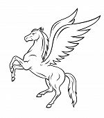 picture of pegasus  - White pegasus horse with wings - JPG