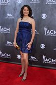 LAS VEGAS - APR 6:  Ashton Shepherd at the 2014 Academy of Country Music Awards - Arrivals at MGM Gr