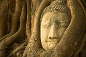 Close-up: Head of Buddha in Ayutthaya, Thailand.