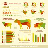 Agriculture infographics flat design elements