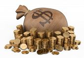 image of sack dollar  - 3d Money sack and piles of coins - JPG