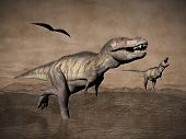 stock photo of tyrannosaurus  - Two tyrannosaurus rex dinosaurs walking with pteranodon birds flying upon in desertic landscape - JPG