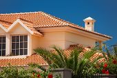 picture of chalet  - Orange tiled roof of a large house - JPG