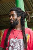 stock photo of rastaman  - Portrait of African man with dreadlocks - JPG