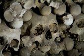 foto of eye-sockets  - old bones and skulls in the Gothic vault of Kutna Hora - JPG