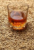 image of malt  - Tumbler glass with whiskey standing on barley malt grains - JPG